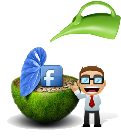 Facebook Marketing by Strategix